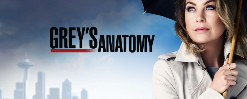 greys-anatomy-saison-12-bilan-critique-brain-damaged-image-une.jpg